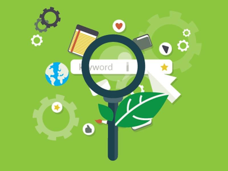 Wordpress Website Design & Organic SEO