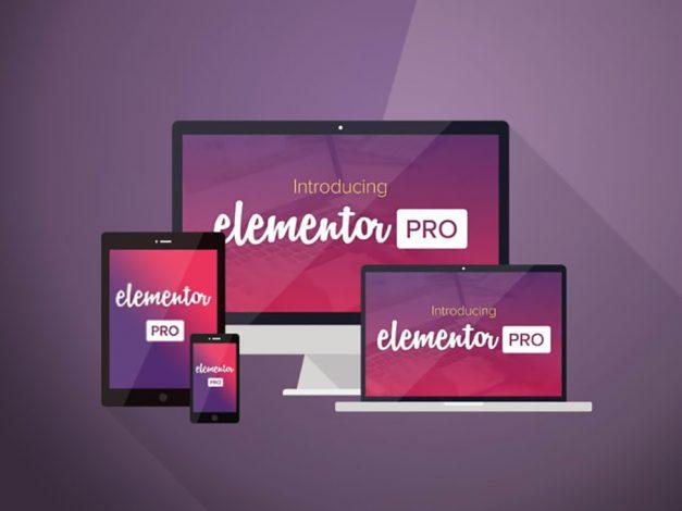 Design your Wordpress website using Elementor pro-page builderr